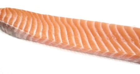 fish-fence-salmon