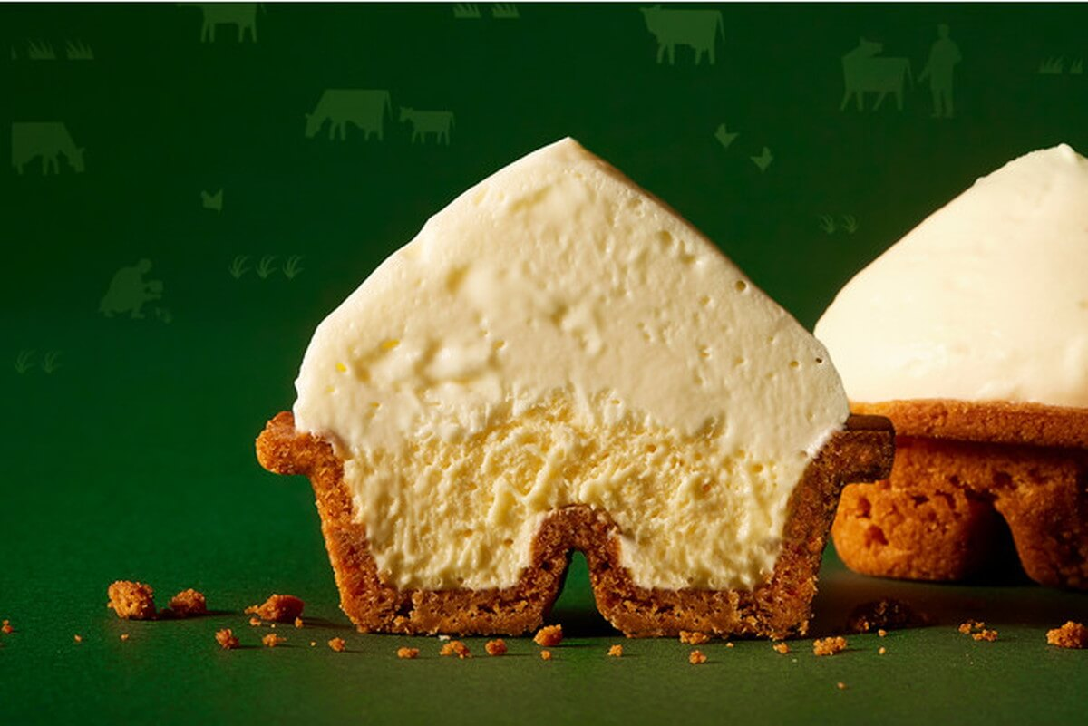 cheese-wonder-delicious